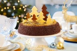 Torte im weihnachtlichen Glanz