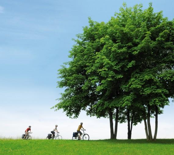 Radstrecken in NRW: Unsere Ausflugstipps