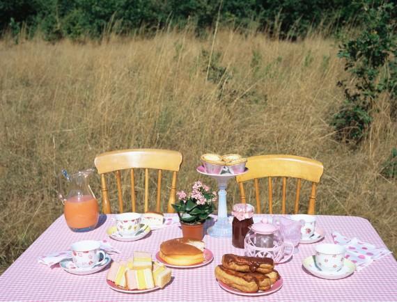 Alles für das Picknick