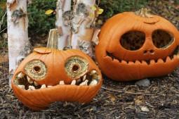 Halloween-Kürbis: So lässt sich das dekorative Schwergewicht schnitzen und verschönern