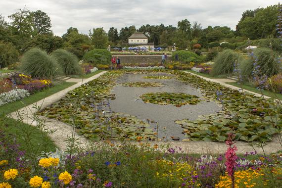Muenchen-Botanischer-Garten_web