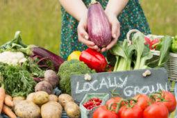 Slow Food – was um Himmels Willen soll das sein?