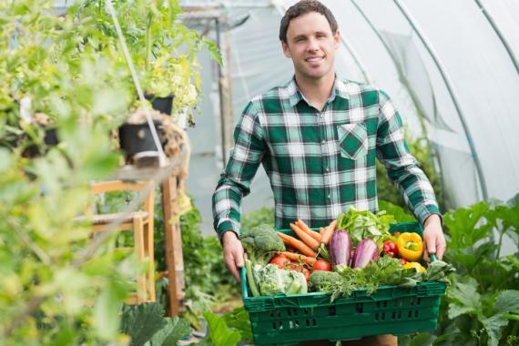 Sich Obst und Gemüse nach Hause liefern zu lassen ist hip.