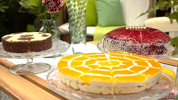 Überraschungs-Mission, Amiaz Habtu, Coppenrath & Wiese-Kuchenparty, Höhle der Löwen, Torten, Kuchen, Desserts