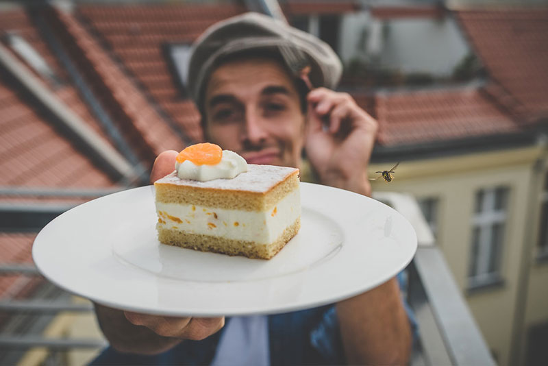 Auf ein Stück Kuchen mit Max Alberti 3