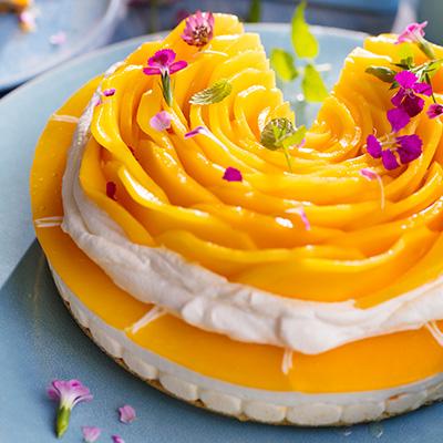Rezept Mango Torte mit Sahne