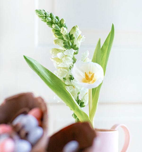 Mousse au Chocolat-Torte simpel mit Eiern gepimpt! 18