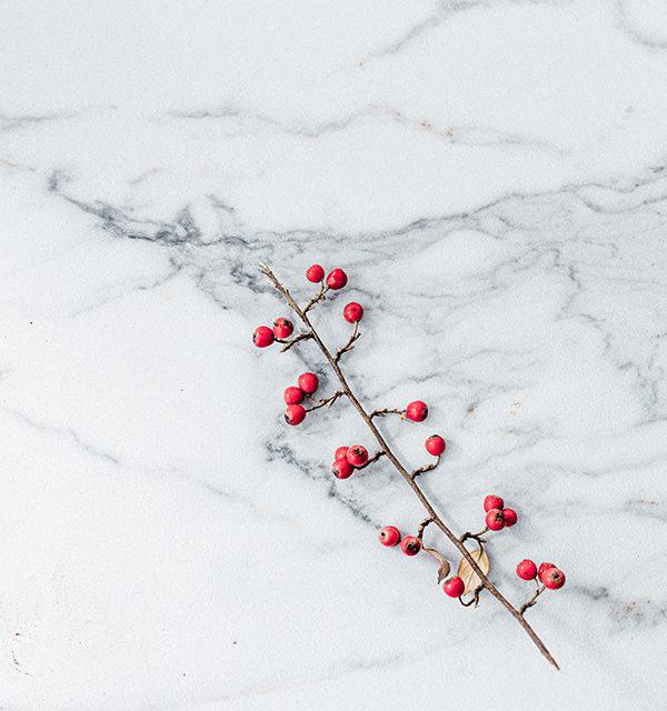 Perfekt im Advent: Käsekuchen mit Bratapfelkompott 15