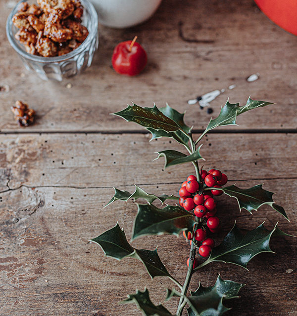 Veganes Weihnachtsrezept: Apfelstrudel mit Cashew-Vanillesoße 21